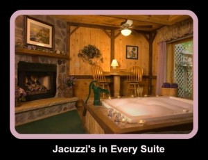 jacuzzi 300x230 Hotels With Jacuzzis In The Room