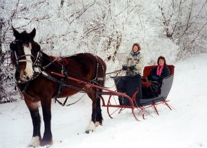 fantasy hills1 Winter Sleigh Rides In Lake Geneva Area